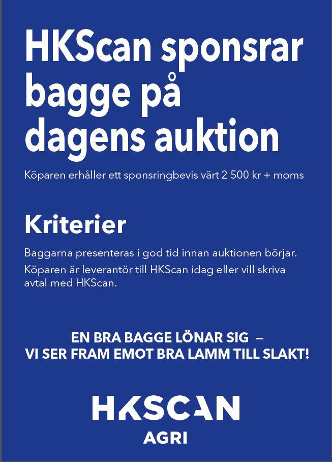 Bagge_sponsring_webb