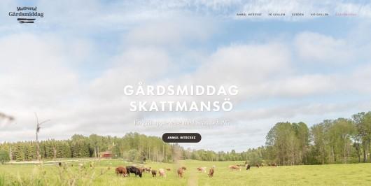 Gardsmiddag_aug