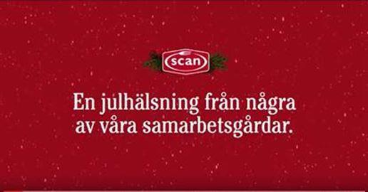 Scan_julhalsn